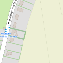 TYRANT MICHELE, Mignault (Le Roeulx) \u003e\u003e Fleurs \u0026 plantes , Dét.